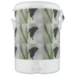 Black Swallowtail Beverage Cooler