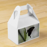 Black Swallowtail Favor Box