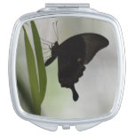 Black Swallowtail Mirror For Makeup