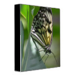 Butterfly Beauty 3 Ring Binder