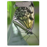 Butterfly Beauty Clipboard