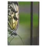 Butterfly Beauty Cover For iPad Air