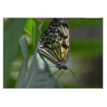 Butterfly Beauty Cutting Board