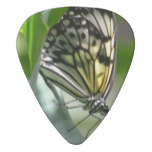 Butterfly Beauty Guitar Pick