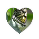 Butterfly Beauty Heart Sticker