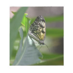 Butterfly Beauty Notepad