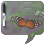 Natural Butterfly Dry-Erase Board