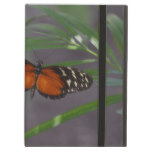 Natural Butterfly iPad Air Case