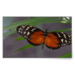 Natural Butterfly Rectangular Sticker