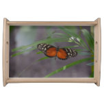 Natural Butterfly Serving Tray