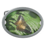 Winged Butterfly Belt Buckle