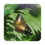 Winged Butterfly Beverage Coaster