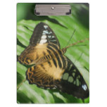 Winged Butterfly Clipboard