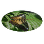 Winged Butterfly Cutting Board