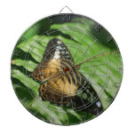 Winged Butterfly Dartboard With Darts