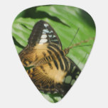 Winged Butterfly Guitar Pick