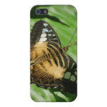 Winged Butterfly iPhone SE/5/5s Case