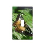 Winged Butterfly Light Switch Cover