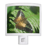Winged Butterfly Night Light